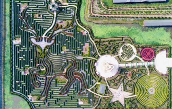 Allikas: http://www.guinnessworldrecords.com/world-records/1/largest-maze-permanent-hedge-maze